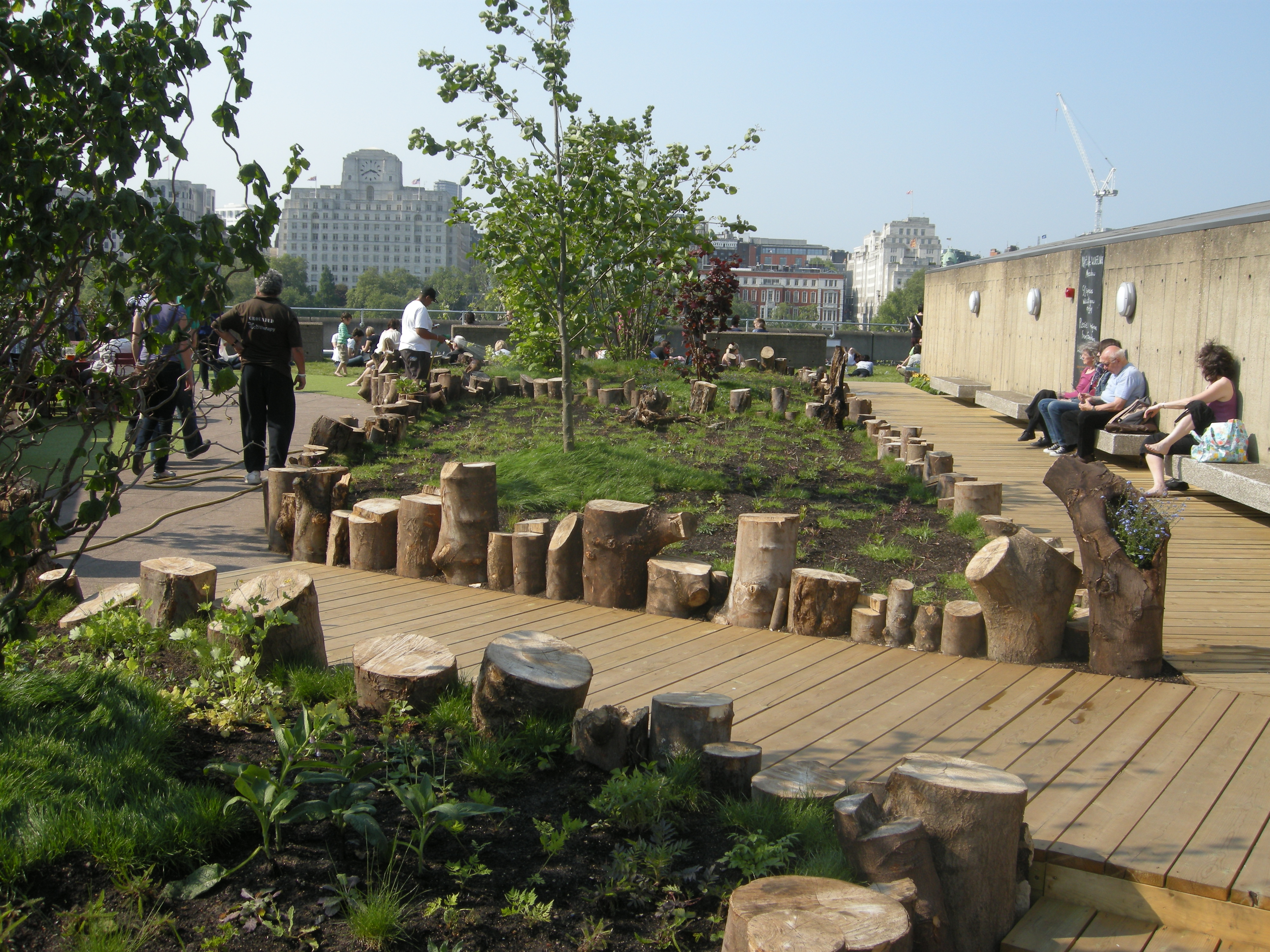 Garden Centre: Queen Elizabeth Hall Roof Garden, London