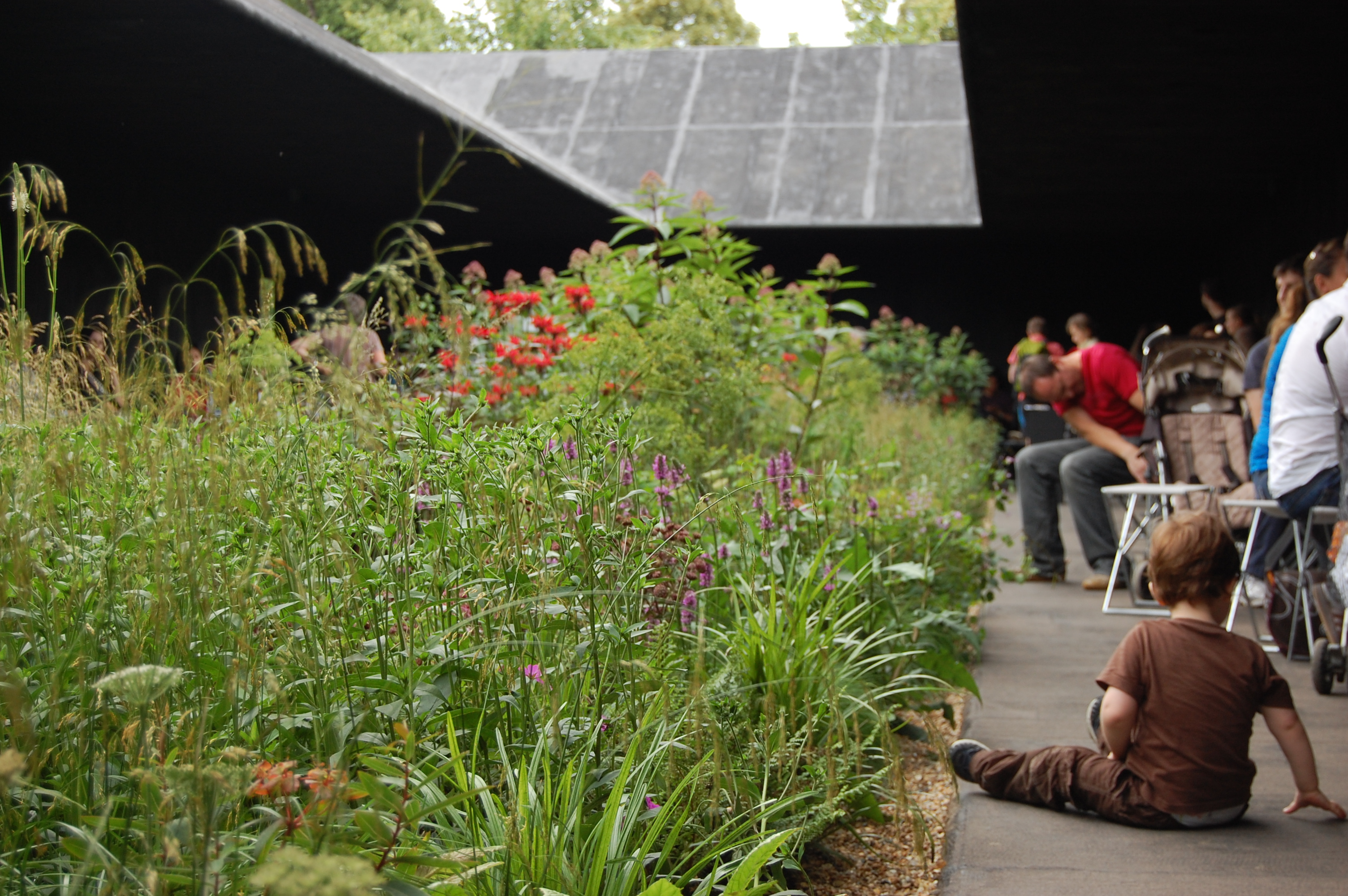 Serpentine gallery pavilion 2011 by zumthor with help from for Piet oudolf serpentine gallery