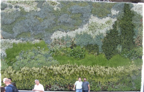 Living Wall 'Van Gogh' Painting Outside the National Gallery, London
