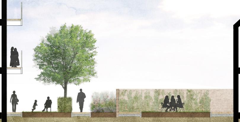 Davis Landscape Architecture Marnock Road Lewisham London Render Section Residential Landscape Architect Design Planning Blog